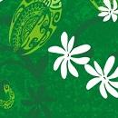 Ponytail 2 - 149 Maeva Green Tiare