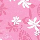 Ponytail 2 - 151 Maeva Pink