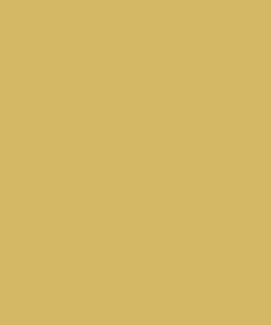 Unisex - 100 Mustard scrub hat