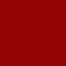 Unisex - 100 Poppy