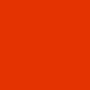 Unisex - 100 Tangerine