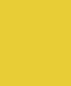 Unisex - 100 Daffodil scrub hat