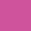 Unisex - 100 Camellia