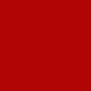 Unisex - 100 Tomato